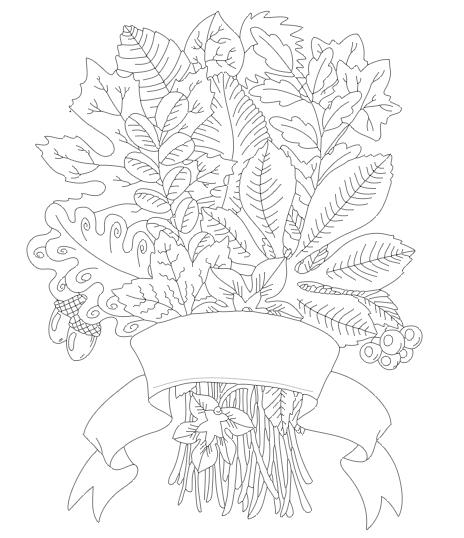 Free fall sketch file
