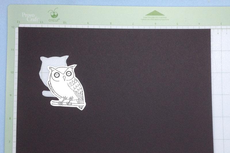 owlresult